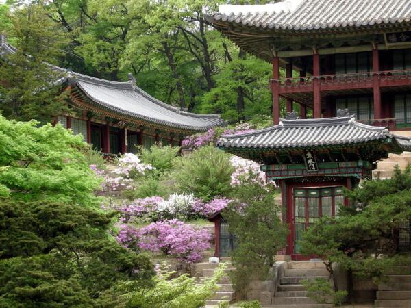 Фестиваль в Южной Корее, или Куда приходит весна?