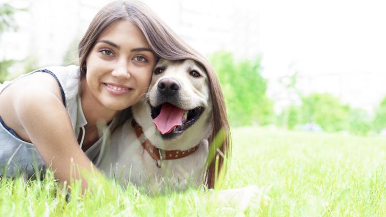 За что нас любят наши собаки?