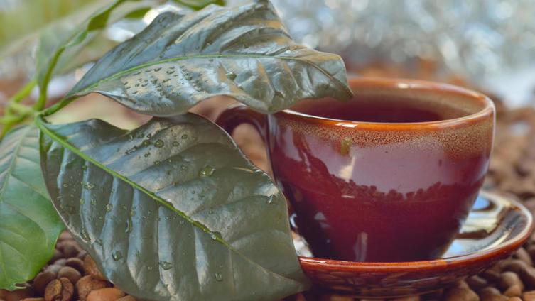 Вам кофе или чай? Кофейный чай, пожалуйста!