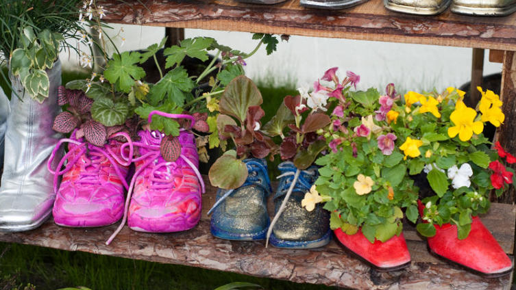 Для чего цветам кроссовки? Новые идеи для старых вещей
