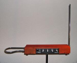 Сложно ли научиться игре на терменвоксе?