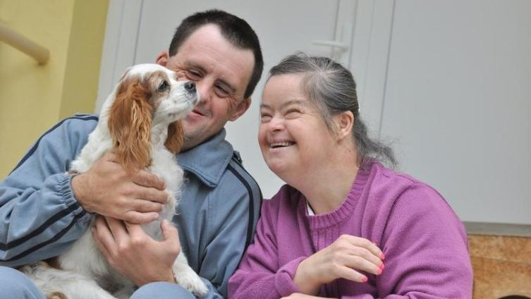 Собака-врач, или Что такое канистерапия?