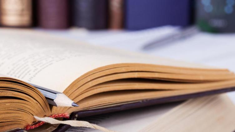 Как Генрих Шлиман изучал русский язык?