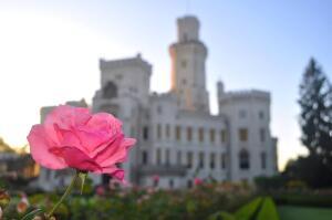 Что посетить в Чехии? Исторический фестиваль пятилепестковой розы