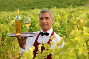 Надоело говорить и спорить? Так вот: De vino - veritas!