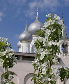 Цветут яблони Ростовского кремля