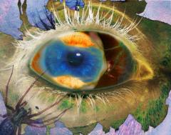 Видение мира - яркий калейдоскоп