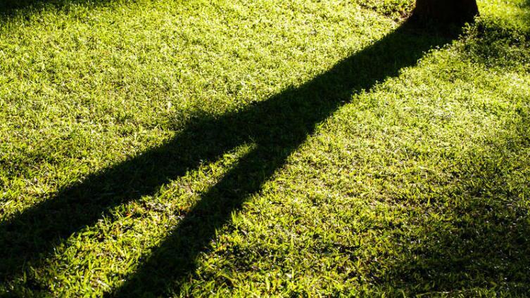 Актуальна ли сегодня излишняя принципиальность?