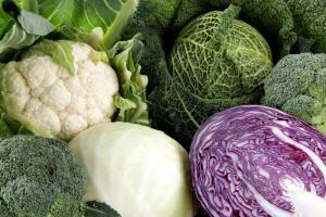 Белокочанная капуста и ее родственники. Как познакомить детей с миром овощей?