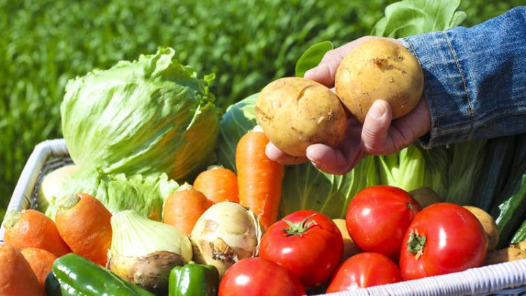 Как сохранить овощи зимой?