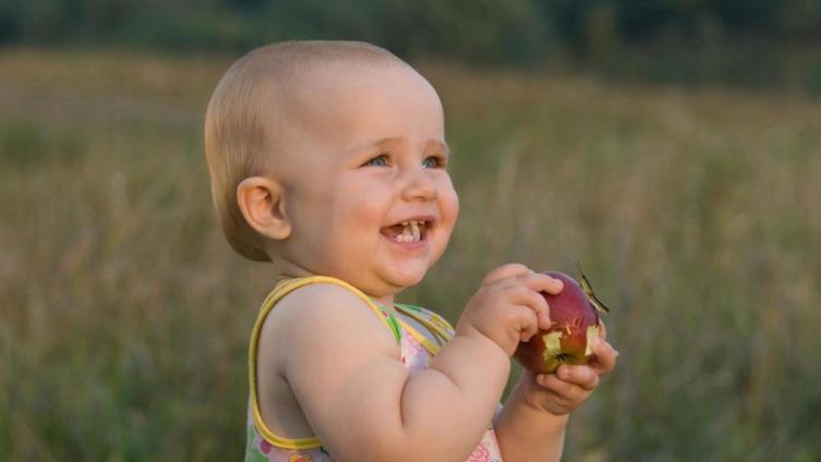 Яблоко. Отчего скромному фрукту такой почет и уважение?