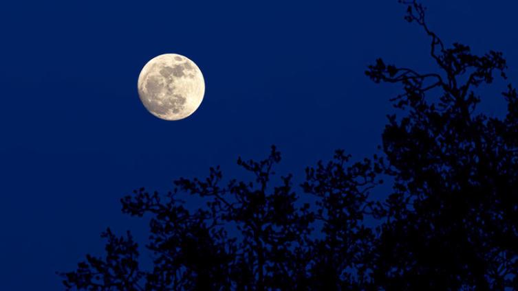 Есть ли на Луне кислород?
