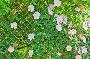 Зачем нужен ручной садовый шнековый бур?