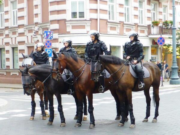 Конная полиция готова защитить демократию
