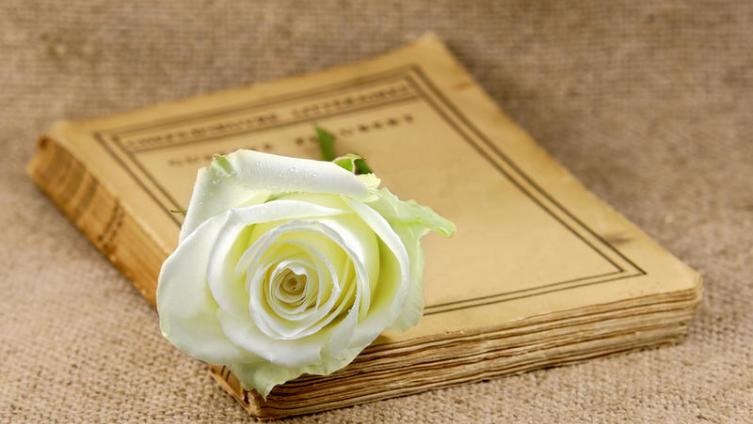 Кому посвятила Маргарита Агашина стихи «Подари мне платок…»?
