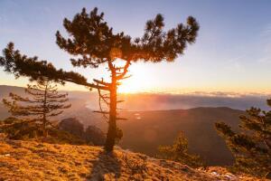 Бархатный отпуск: каковы плюсы и минусы отдыха в сентябре?