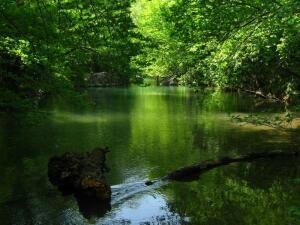 Где отдохнуть в Крыму, если море уже надоело? Чернореченский каньон