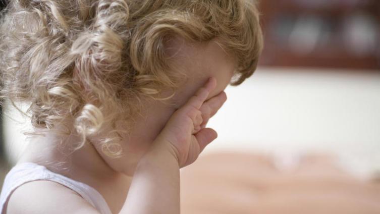 Почему бывают истерики у дошкольников? Причины и пути решения проблемы