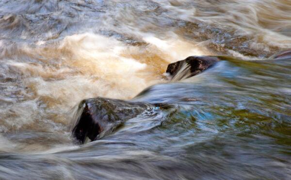 Может ли в одной реке течь пресная и соленая вода?