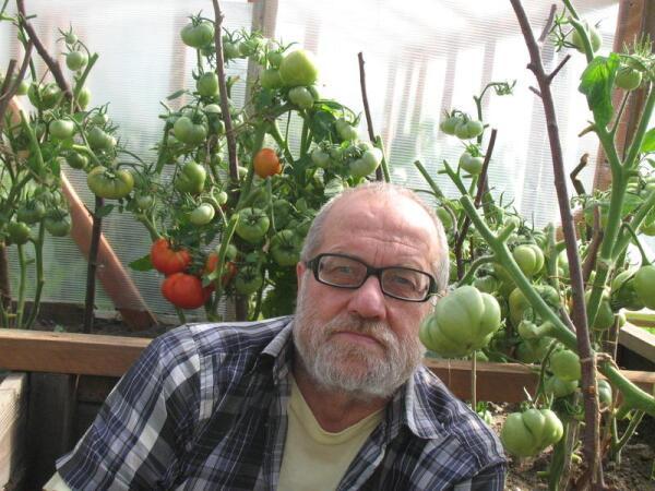 Автор в краю вечнозеленых помидоров на широте Магадана, 2012 г., Зарубино, Новгородская обл.