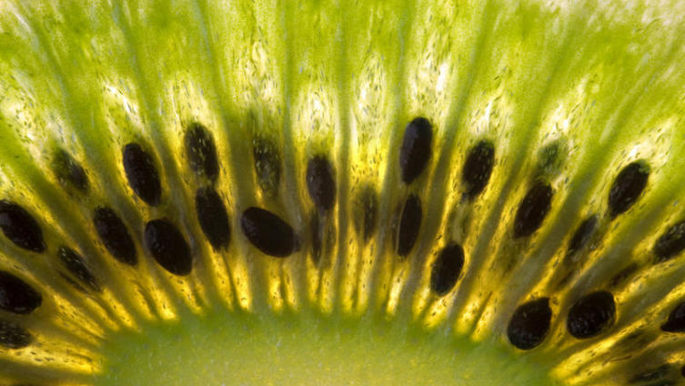 Как выбрать хороший киви и в чем от него польза организму?