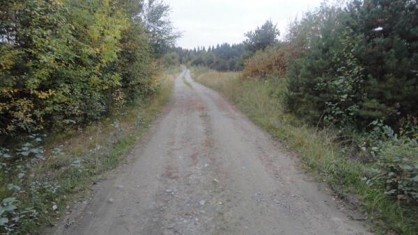 В дебрях лесов северо-запада Карелии затерялась эта маленькая деревенька