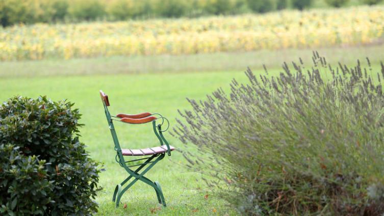 Психофармакология: есть ли альтернатива «сухой водке»?