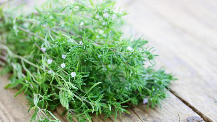 Огород круглый год, или Как создать «зеленый» подоконник?