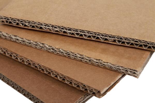 Можно ли строить дома из бумаги?
