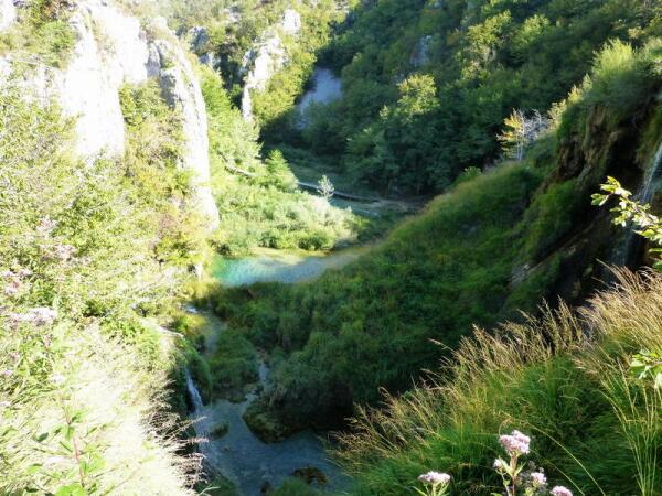 Пейзаж горного ущелья