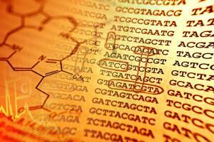 ДНК-анализ. Можно ли узнать свою историю? Результаты тестирования