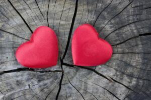 Семья: счастье или добровольное заключение?