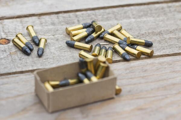 Винтовочный патрон .22 LR обр. 1887 г. Почему его называют «маленький патрон с большими возможностями»?