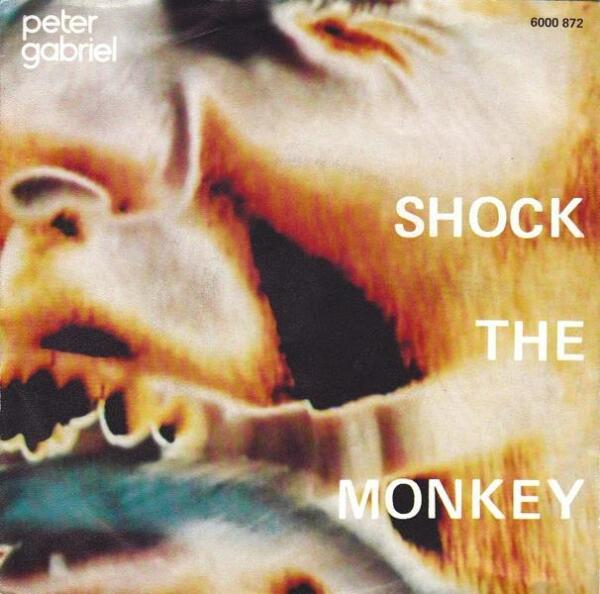 П. Гэбриэл: «Сингл «Shock the Monkey» не особенно хорошо продавался. Некоторые поклонники хардкора считают его лучшей моею записью, а остальные находят его слишком эксцентричным»
