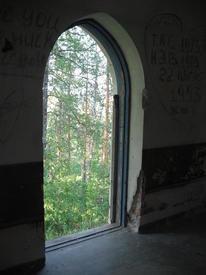 А за окном - дремучий лес