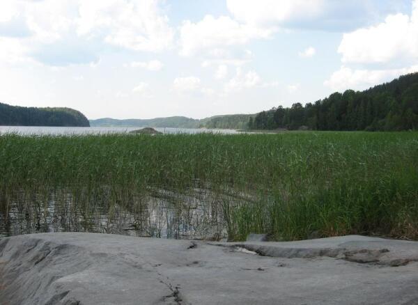 Между Сортавала и Лахденпохья дорога довольно часто выскакивает прямо к самому берегу Ладожского озера