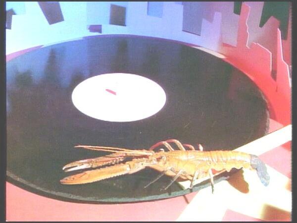 Кадр из видео «Rock Lobster»