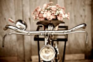 Как  велосипед завоевывал мир?