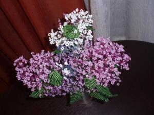 Вероника Нистоцкая