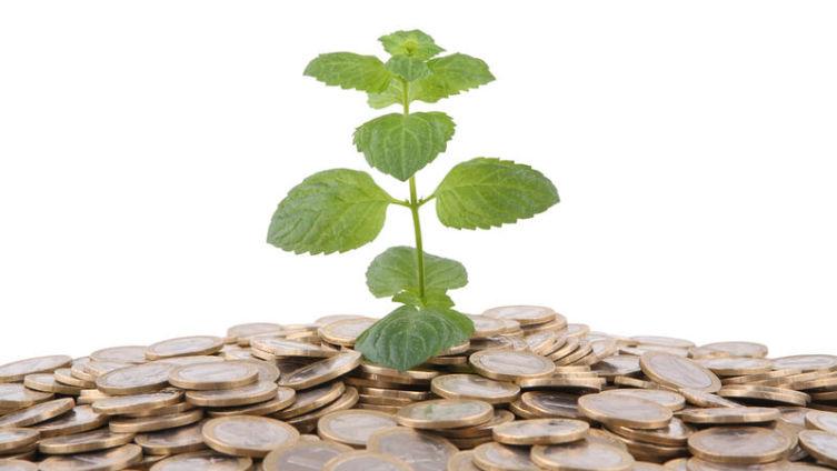 Криптовалюта MintCoin. Почему эту валюту называют «мятная энергосберегающая валюта с 20% бонусом»?