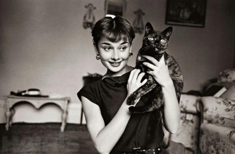 Ко дню рождения Одри Хепберн. Кого весь мир зовет «иконой стиля»?