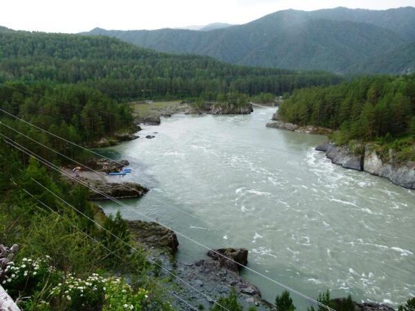 Внизу Катунь, слева цвет воды отчетливо указывает место впадения Чемала
