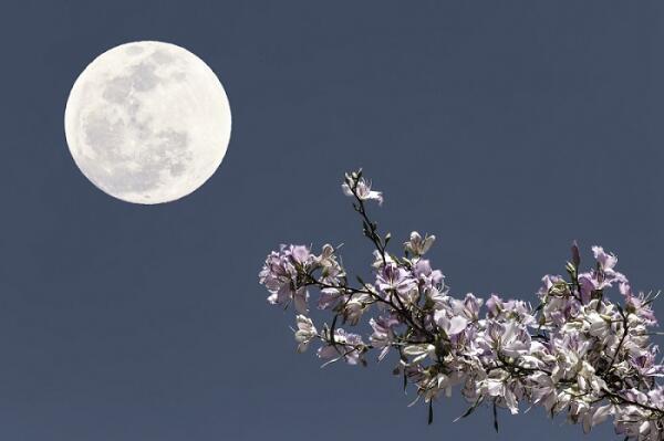 Берцелиус назвал открытый элемент Селеном, что в переводе с греческого означает Луна