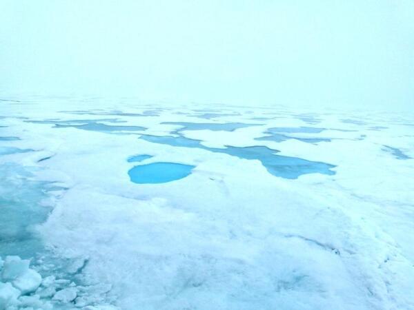 А это лед без снегового покрова