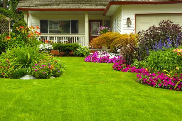 Газон и камень. Как облагородить пространство вокруг загородного дома с минимальными затратами?