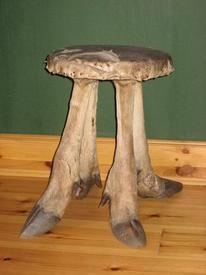 Стул, изготовленный из лося— одного из охотничьх трофеев папаши