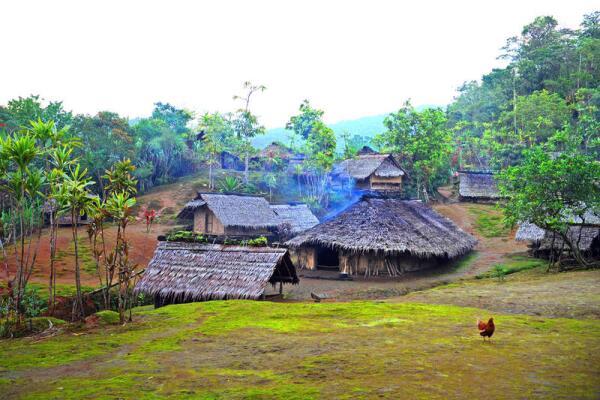 Деревня Рейнфорест в Вануату