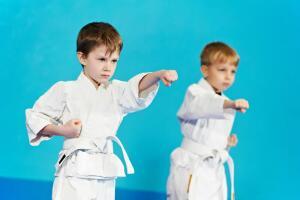 Что такое самостоятельная тренировка в боевых искусствах? Часть 2