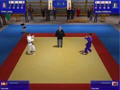 С помощью компьютерной игры можно усвоить основные движения, но проникнуться духом дзюдо можно только под началом Учителя
