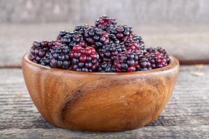 Ежевика — скупая ягода. Чем она ценна?